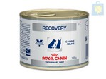 ROYAL CANIN-VETERINARY DIET - RECOVERY SUPPORT HUMEDO PERRO Y GATO (12 y 24Uds - 195g)