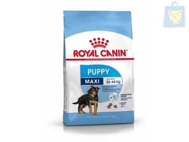 ROYAL CANIN - MAXI JUNIOR (4Kg, 10Kg y 15Kg)