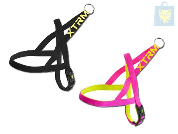 X-TRM - HARNESS NEON FLASH (3 Sizes - Various colors)
