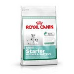 ROYAL CANIN - MINI STARTER (1Kg,3Kg y 8,5Kg)