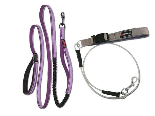 Straps and Strings para Dogs