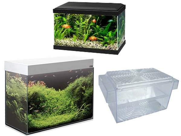 Aquariums and Breeding Areas para Fish
