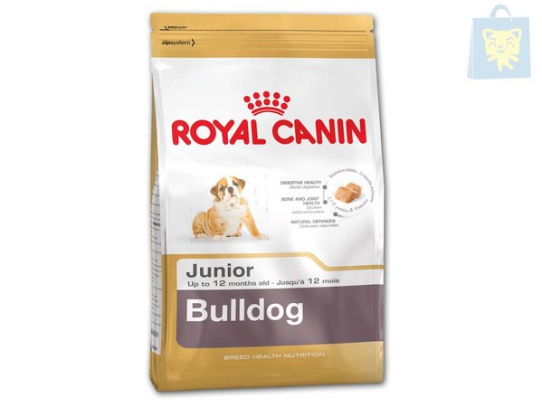 BULLDOG JUNIOR (3Kg and 12Kg)  - SUMMER OFFER!!